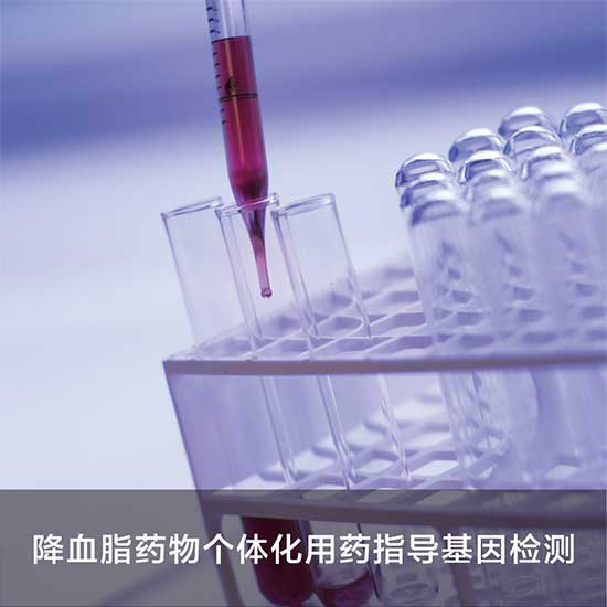 Picture of 降血脂用药指导基因检测