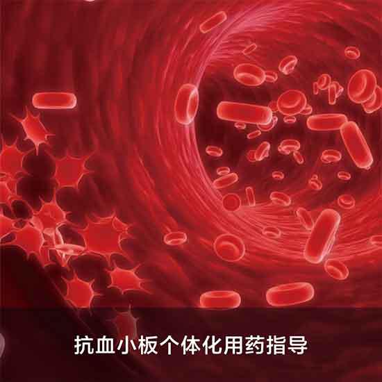 Picture of 抗血小板个体化用药指导